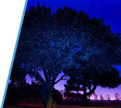 laser projection lights