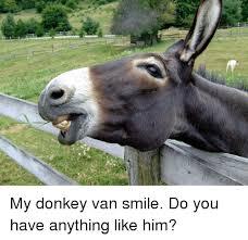 Funny Donkey Memes - my donkey van smile do you have anything like him donkey meme
