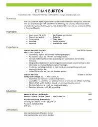 Marketing Resumes Sample by Marketing Resume Format Wonderful Sales Marketing Resume Format