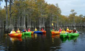 Alligators In Georgia Map 7 Unforgettable Places To Kayak In Georgia