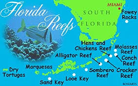 Map Of Coral Reefs Top Three Places To Go Snorkeling In Key West Miami Tours