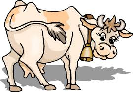 mad cow cliparts free download clip art free clip art on