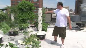 soil less sky farming rooftop hydroponics on nyc restaurant youtube