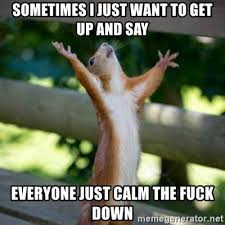 Calm The Fuck Down Meme - sometimes i just want to get up and say everyone just calm the