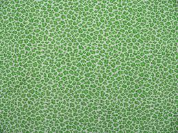 leopard fabric leopardgreenapple f jpg