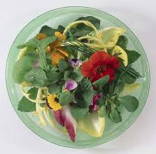 edibles flowers beautify a dish with an edible flowers