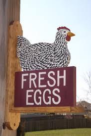 best 25 chicken coop signs ideas on pinterest chicken signs