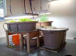 northern aquaponics year round aquaponics for home food growers