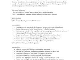 resume format ms word file dramatic illustration resume format under resume services