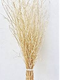 Decorative Branches For Vases Uk Decorative Coloured Birch Twigs And Branches Silver 90cm U0027s