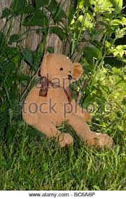 remembrance teddy bears a teddy against a tree in garden of remembrance stock photo