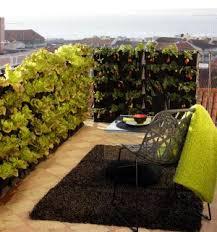 garten balkon mini garten blumen kräuter oder gemüse vertikal anbauen