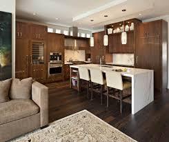 kitchen cabinet transformations 100 rustoleum cabinet transformations espresso ashley