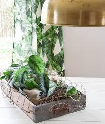 Tischdeko Esszimmertisch Kreative Deko Kiste Im Botanical Style Für Euren Tisch Eclectic