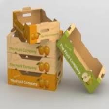 fruit boxes bhagwati packaging