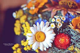 Flowers For Birthday 6 7 2017 Flowers For Birthday By Nikulina Helena On Deviantart