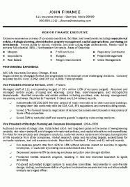 best executive resume format executive resume example telecom