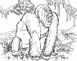 coloring pages extraordinary coloring gorilla 8iagaxyia
