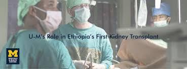 nephrology internal medicine michigan medicine university of