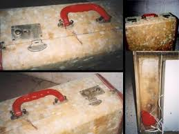 Getting Rid Of Mold In Basement by A Brief Guide To Mold Moisture And Your Home Mold Us Epa