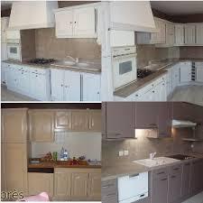 renover meubles de cuisine erstaunlich renovation meuble cuisine haus design