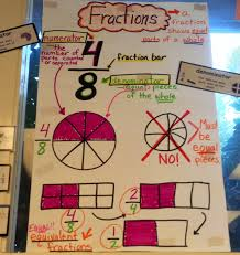 fabulous finch facts math anchor charts use to make a sort for