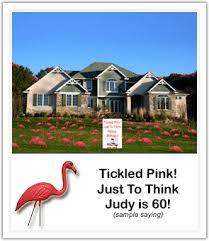 balloon delivery birmingham al flamingo a friend birmingham flamingo a friend birmingham al