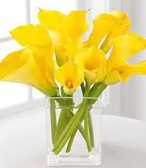calla lilies bouquet beauty calla bouquet flowers