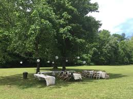 tables setup in backyard a cluster of trees picture of