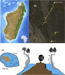Map Of Madagascar Locational Maps Of Caves And Sketches Of The Aven Cave Sink