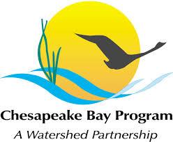 chesapeake bay native plants chesapeake bay trust lawn fertilizer use behavior change