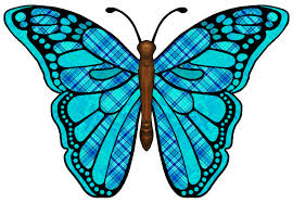 symmetry clipart butterfly pencil and in color symmetry clipart