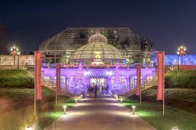 phipps conservatory christmas lights dave dicello photography phipps christmas trees out front of