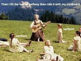 Sound Of Music Meme - surfboard surfbort beyonce sound of music funny pinterest