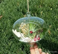 online cheap hanging onion glass terrarium indoor plant terrarium