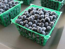 caes newswire frozen blueberries