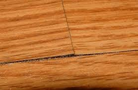 repair water damaged laminate flooring flooring design