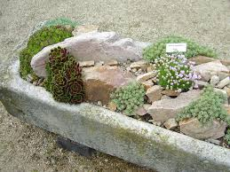 garden awesome rock garden ideas implemented in modern house