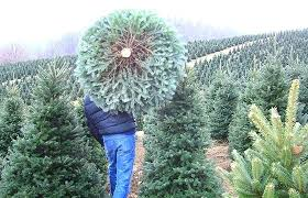 artificial tree ft by companies inc trees manufacturers
