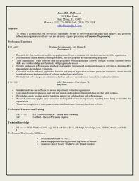 Best Resume Objective Statements by Help With Resume Objective Statement Contegri Com