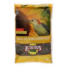 best 25 sunflower seeds for birds ideas on pinterest homemade