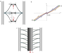 harvesting energy with load driven dielectric elastomer annular