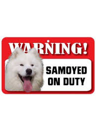 american eskimo dog nz samoyed sign ds066 jpg