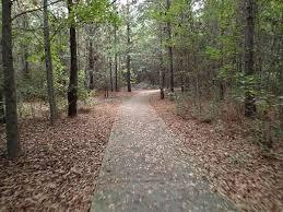 jacksonville baldwin rail trail florida alltrails com