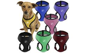 Four Paws Comfort Control Harness Top 10 Best Dog Harnesses Of 2017 U2013 Reviews Pei Magazine