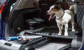 nissan rogue for dogs 2017 new york auto show suvs galore autonxt