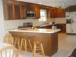 Staining Kitchen Cabinets Darker Before And After Before And After Photos