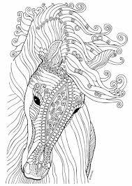 69 horse colouring pages images coloring books