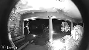 porch at night bird on porch at night caught on cam youtube