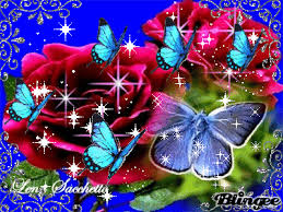 Roses And Butterflies - rosas e borboletas roses and butterflies by lena sacchetto